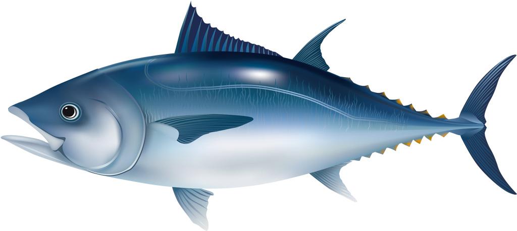 【妊娠中】妊婦に魚肉ソーセージは食べてもOK?