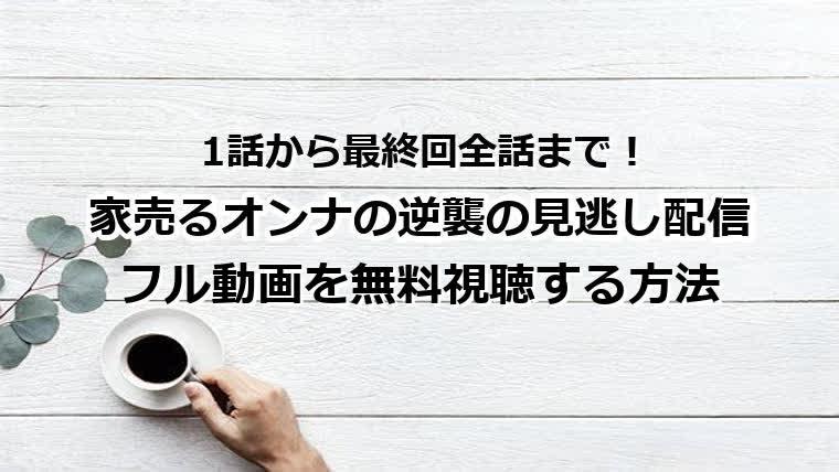 家売るオンナの逆襲の見逃し配信 フル動画を無料視聴する方法 1話から最終回全話まで!